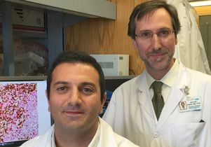 Comprehensive Cancer Center members Dr. Paul Tumeh and Dr. Antoni Ribas Source: Health Canal
