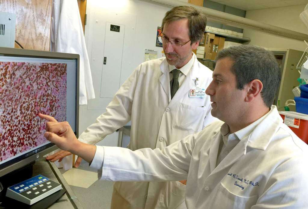 """UCLA cancer researchers Antoni Ribas, standing, and Paul Tumeh have been studying why a drug federal regulators approved in September does an """"amazing"""" job against advanced melanoma — but in only about 30 percent of the people suffering from the deadly skin cancer. UCLA JONSSON COMPREHENSIVE CANCER CENTER - See more at: http://suncoastnews.com/su/list/pasco-press/math-formula-helps-predict-melanoma-treatment-success-20141202/#sthash.nUJNy9tD.dpuf"""